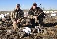 Goose hunting in Missouri.jpg