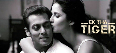 Katrina Kaif Salman Khan Ek Tha Tiger New Photo