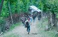 Avinash Tiwary Laila Majnu Movie  Photos  1