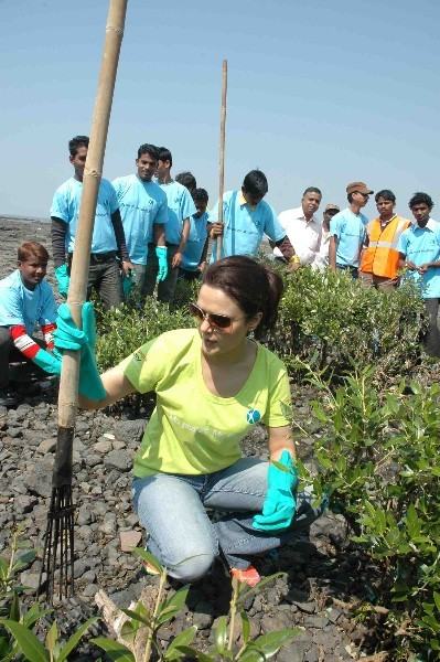 Preity Zinta Greenathon  Cleaning the Cartar Road  Sea front 01