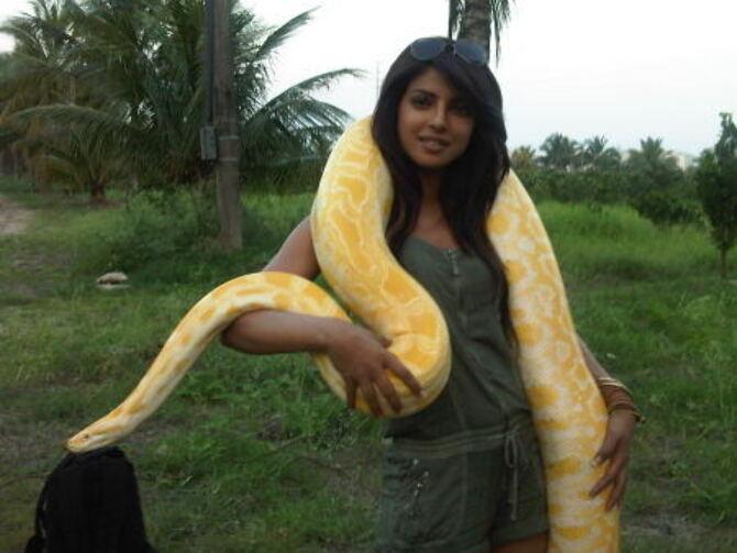 Priyanka Chopra posts photo with snake.