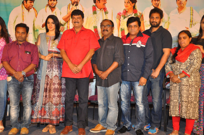Oollo Pelliki Kukkala Hadavidi Movie Press Meet  18