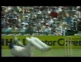 Funny Cricket Falling Over Cricket clangers